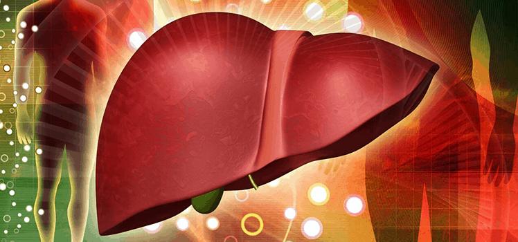 Как проявляется болезнь печени у человека