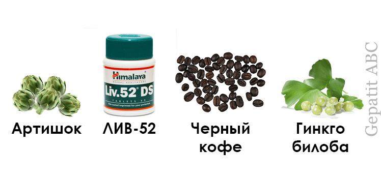 Артишок, ЛИВ 52, черный кофе, Гинкго билоба