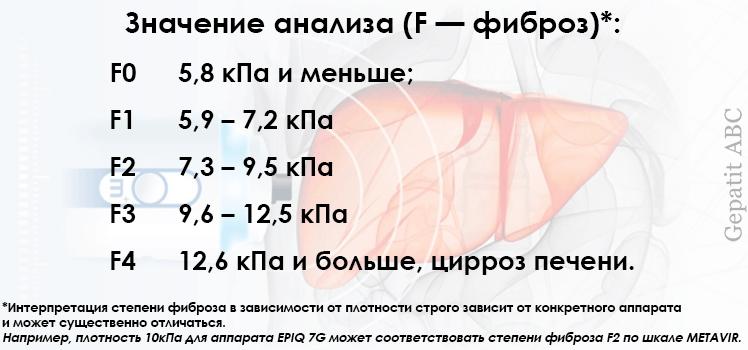 Расшифровка фиброскана