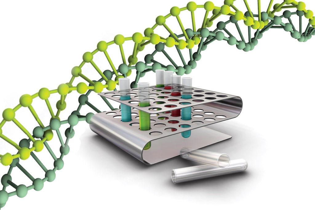 Распространенные генотипы ВГС
