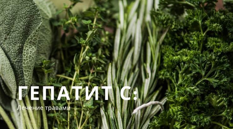 Какие травы пить при гепатите С для эффективного комплексного лечения